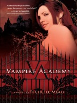 vampire-academy.jpg
